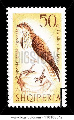 Albania 1966