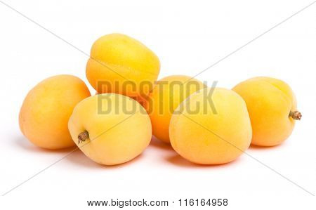 Apricots isolated on white background