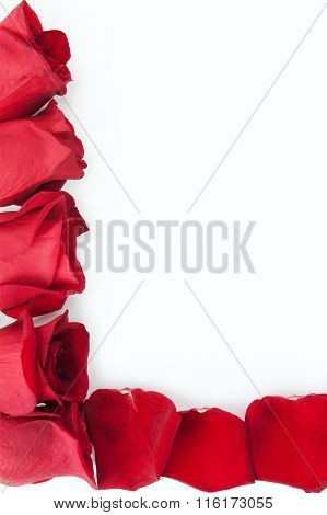 Red Roses With Petals As A Frame Outline