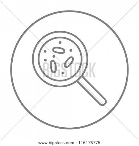 Microorganisms under magnifier line icon.