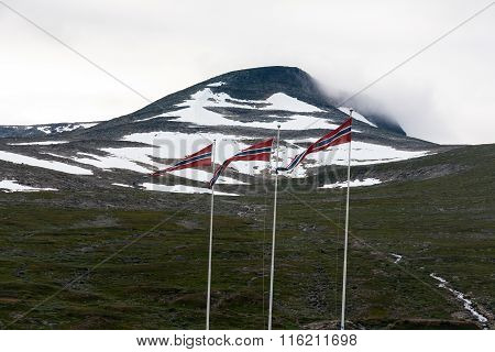 Tundra With Flags