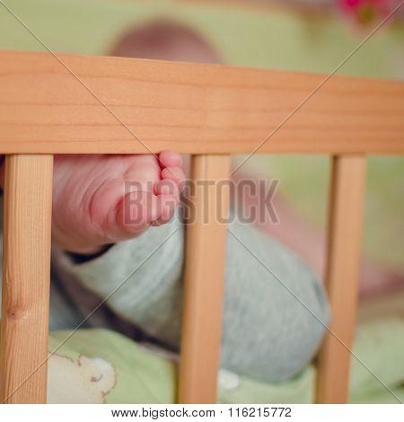 Tiny Baby's Toes