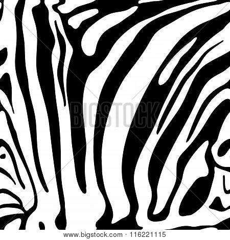 Animal Print Monochrome Seamless Pattern