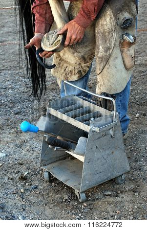 Male farrier working.