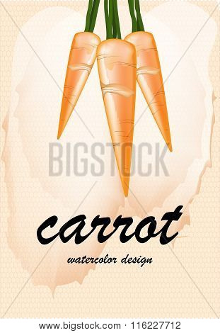 Carrot On Blurred Background