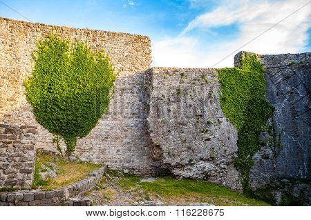 Medieval wall's ruins with greenery in Old town Bar, Montenegro,
