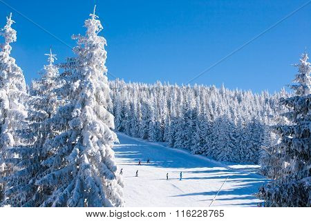 Vibrant panorama of the slope at ski resort, people skiing, snow trees, blue sky