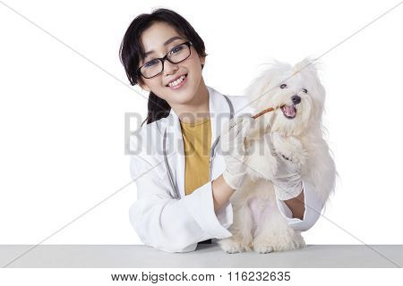 Cheerful Veterinarian Gives Snack On The Dog