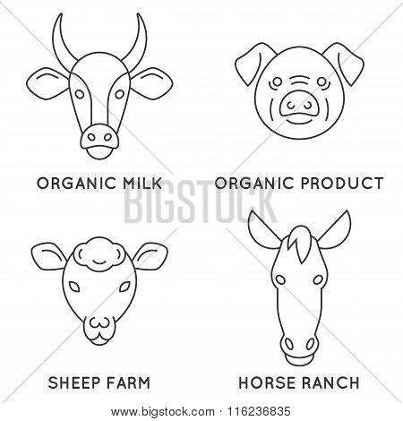 Farm animals logo collection.