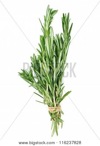 Bunch Of Rosemary