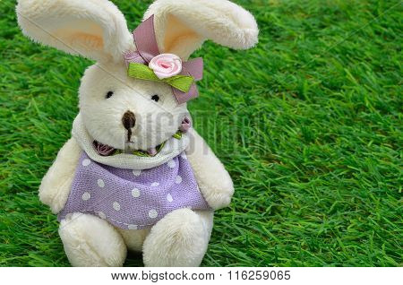 Dressed Easter bunny