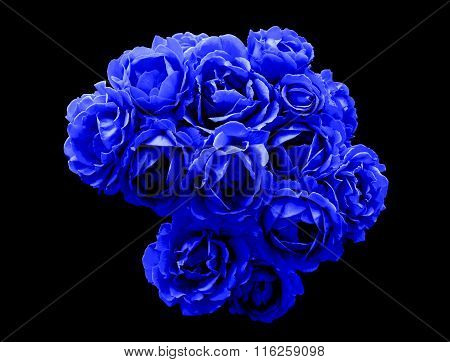 Surreal Dark Chrome Bush Of Blue Rose Flowers Macro Isolated On Black