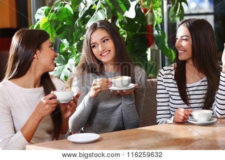 Beautiful girls drink coffee and speaking in cafe