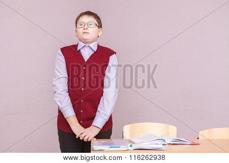 Boy Stands Near The Desk In The Classroom