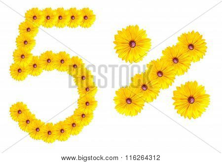 Figures 5% Of The Letters Written By Flowers