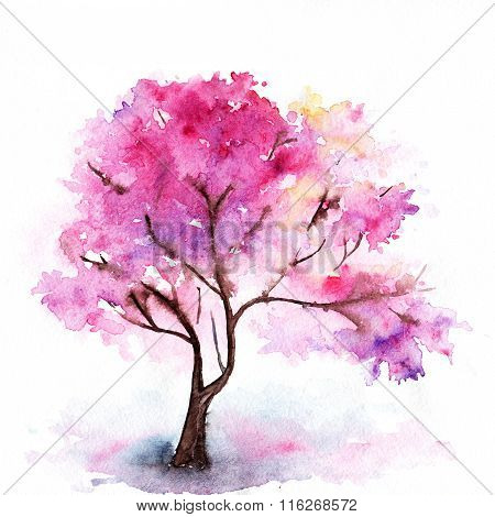 Watercolor Single Pink Cherry Sakura Tree Isolated
