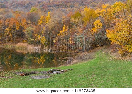 Autumnal landscape on the lakeside in wild forest
