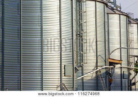 Silver Silos In Corn Field