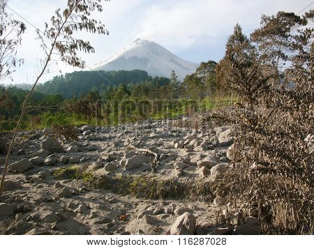 Volcanic ash destroys the upper slopes of Mount Merapi, Indonesia, after a severe volcanic eruption