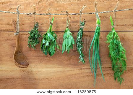 Assorted Hanging Herbs ,parsley ,sage,rosemary,spring Onion And Dill  And Thyme For Seasoning Concep