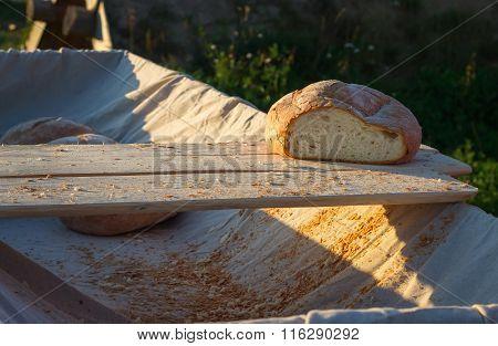 Fresh Hearth Bread On Board In The Cart.