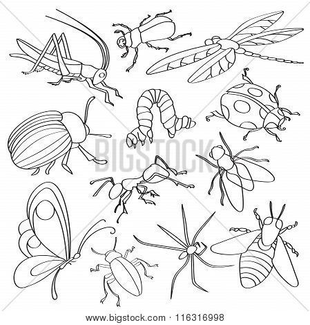 Doodle vector insects