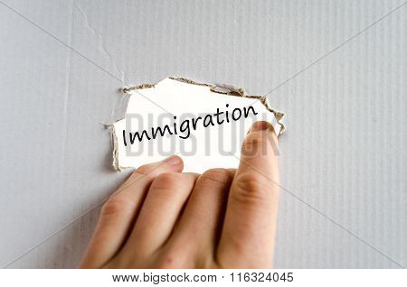 Immigration Text Concept