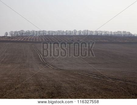 Dirt Road In The Dry Field