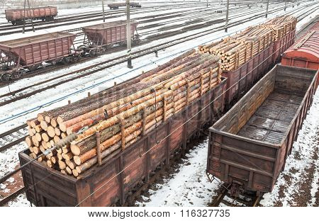 Freight Wagons With Logs And Empty Wagons