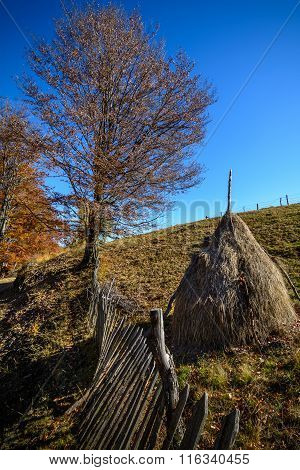 Autumn Mountain Landscape With Stacks And Wooden Fence. Beautiful Sunny Autumn Mountain View With Ha