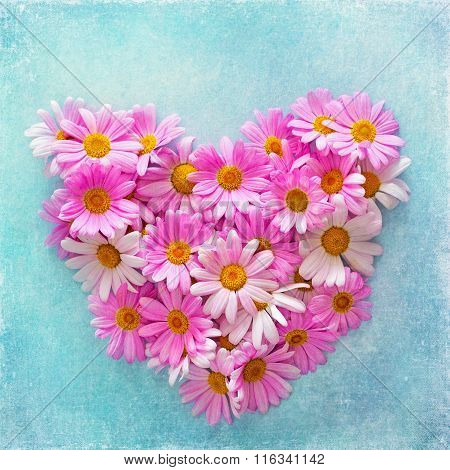 daisies in the shape of a heart