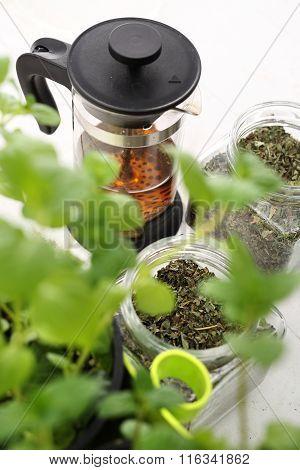 Herbal medicine, herbal tea.