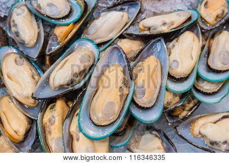 Fresh Mussels On A Market