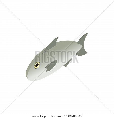 Fresh raw fish isometric 3d icon