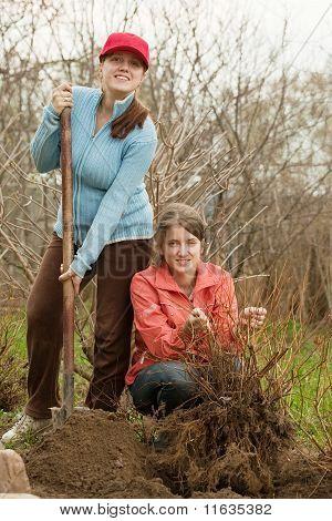 Mujeres reajuste brotes de Bush
