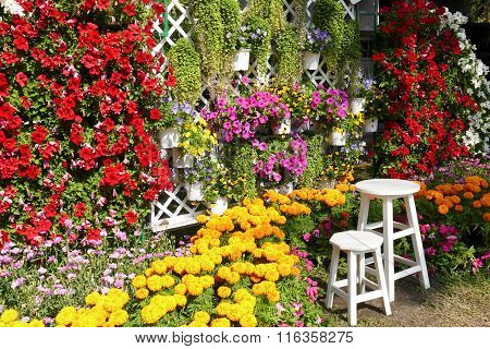 Wooden Stool And Blooming Flower Decorating In The Garden