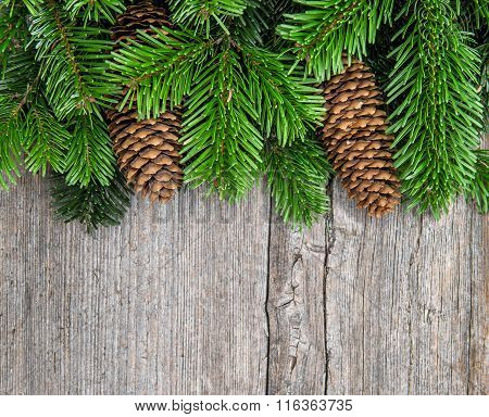 Christmas Tree Branches With Pine Cones
