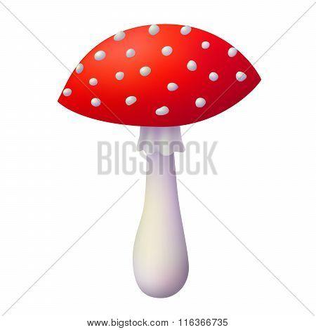 Amanita red white mushroom isolated illustration vector