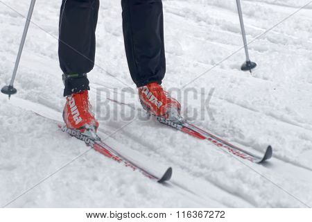 STOCKHOLM - JAN 24 2016: Close up of colorful skies feet and legs of a cross country skier at the Stockholm Ski Marathon event January 24 2016 in Stockholm Sweden