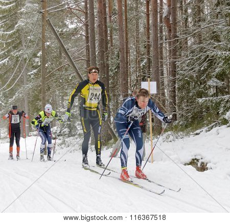 Group Of Cross Country Skiing Men In The Beautiful Pine Forest