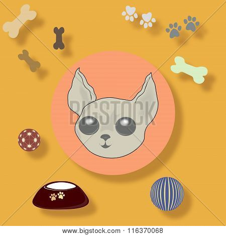 Funny Vector Illustration With Accessories For Dogs.
