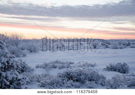 Dawn In A Winter Landscape