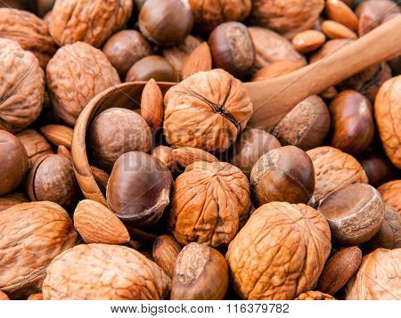 Wooden Spoon On Different Kinds Of Nuts In Shells ,cashew, Almond, Walnut, Hazelnut, Pistachio, Haze