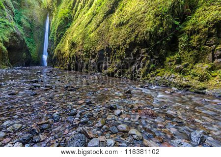 Beautiful nature in Oneonta Gorge trail Oregon