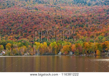 Beautiful Autumn Foliage And Cabins In Elmore State Park, Vermont