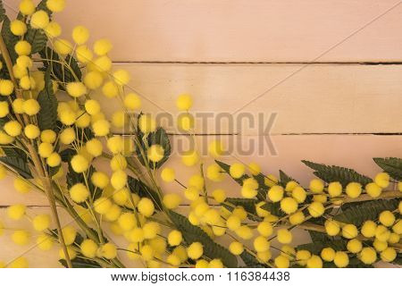 Wooden Background With Mimosa