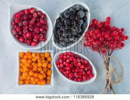 Frozen Berries On A Grey Metallic Background - Aronia, Cranberries, Sea Buckthorn, Viburnum cowberry