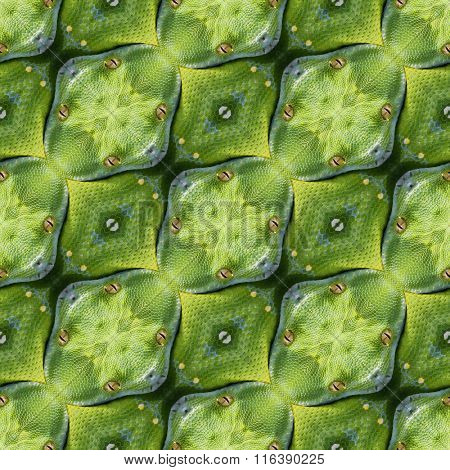 Abstract Reptilian Skin Seamless Pattern Texture