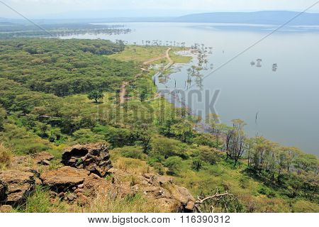 Scenic landscape view of Lake Nakuru National Park, Kenya