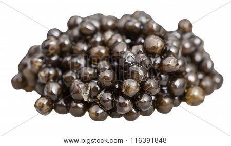Handful Of Black Sturgeon Caviar Close Up Isolated